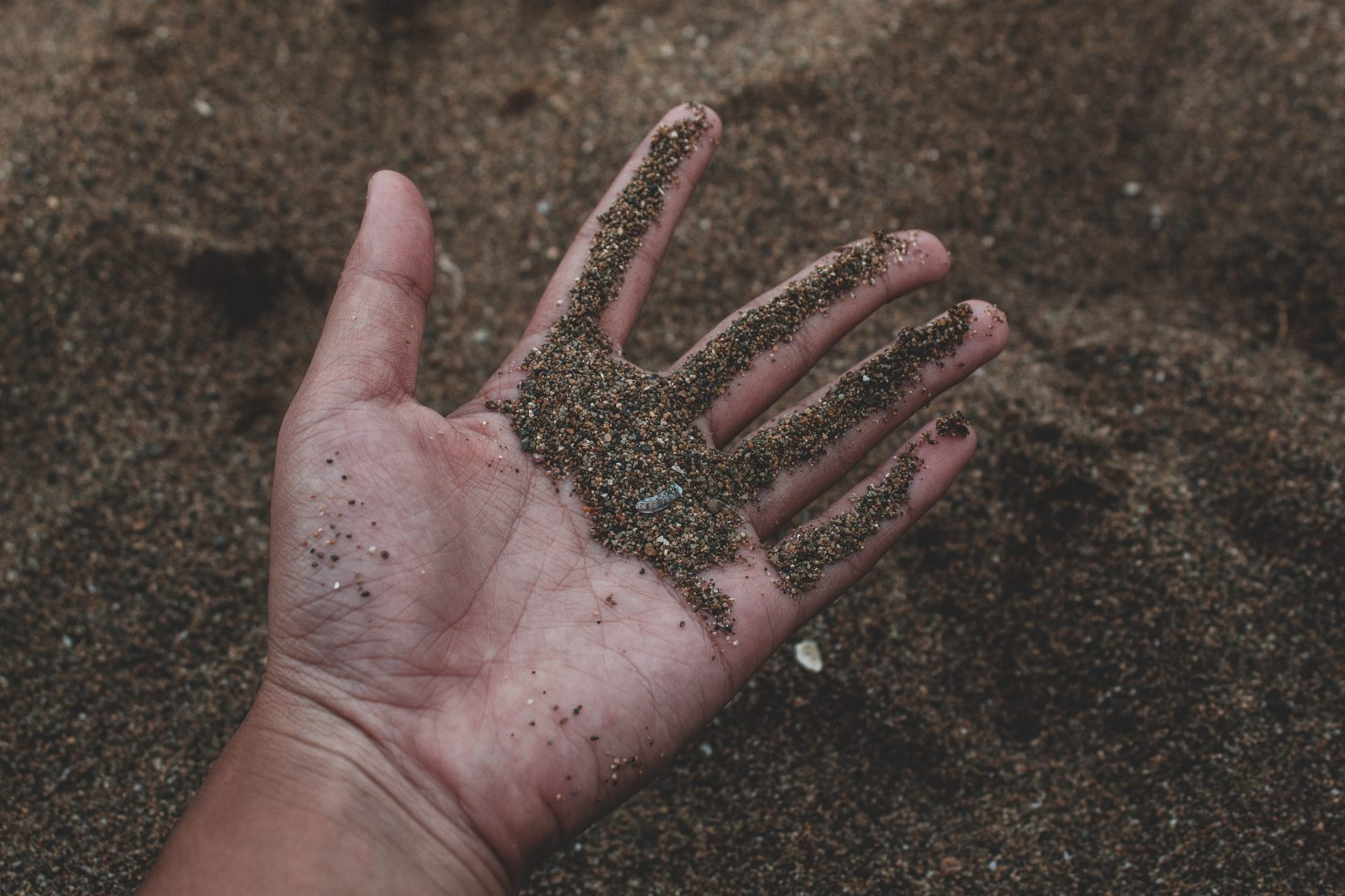 dirt in hands